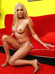 Hung Black Shemale Strokes Her Cock