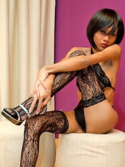 Tempting Ladyboy In A See-thru Teddy And Stockings