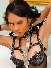 Seductive Shemale Mistress Ready To Whip And Train